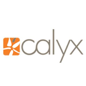 Calyx Branding